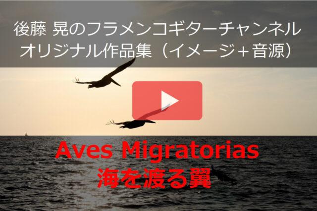 海を渡る翼 動画