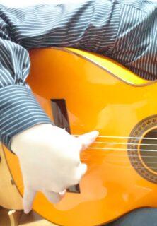 親指奏法2