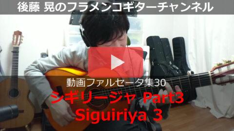 シギリージャPart3 動画
