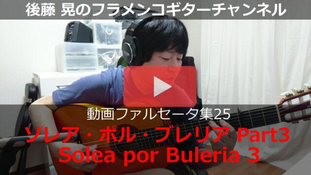 ソレア・ポル・ブレリア Part3 動画